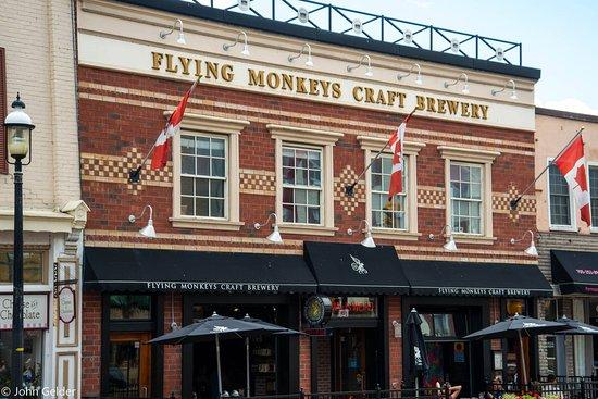 Flying_Monkeys